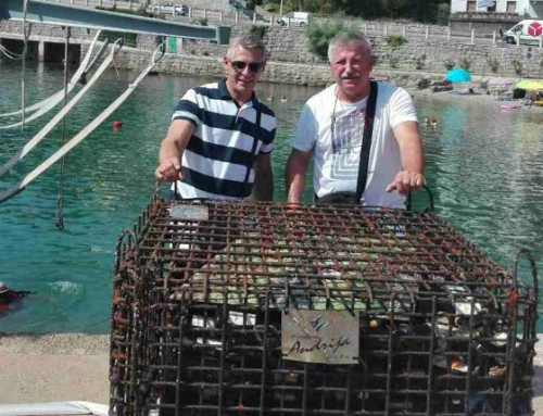 "Top quality wines ""Andrija"" were 22 meters below sea level for one year"